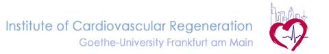 Institute of Cardiovascular Regeneration