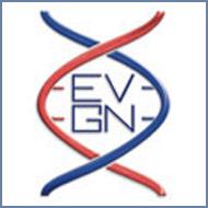 European Vascular Genomics Network