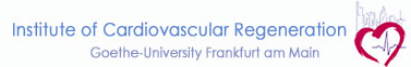 Logo Institute of Cardiovascular Regeneration
