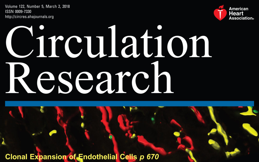 Clonal Expansion of Endothelial Cells